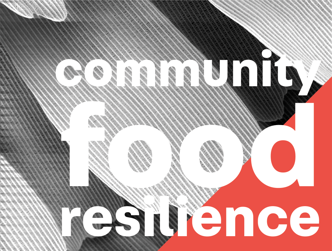 Community food resilience
